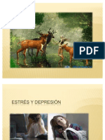 ESTRÉS Y DEPRESIÓN