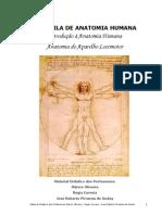 Apostila I - Introdução a Anatomia e Aparelho Locomotor