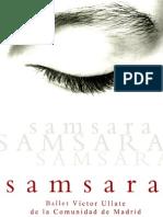 Dossier Samsara