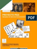Ejemplos de evaluación pisa II