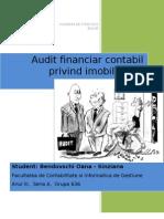 Proiect Audit Financiar Contabil Privind Imobilizarile Corporale