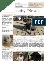 MopscityNews05_09