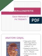 Glomerulonefritis Ppt