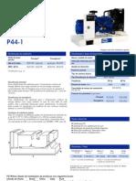 P44-1-(4PP)PT(0810)