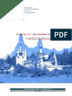 Castelul Peles - Mecanismele degradarii