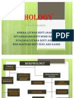 Morphology Betol Pyer!!!