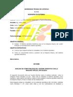Informe de La Makina Virtual Imprimir