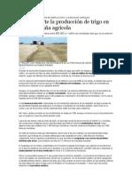 la agricultura l la Región Pampeana