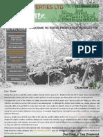 Petite Properties Newsletter - DECEMBER 2010