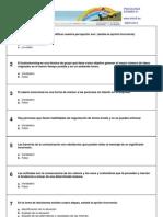 Director de autoescuela - Test Psicología