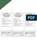 Pauta Cursista Nucleada PDF