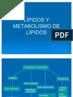 LÍPIDOS+Y.. (1) BIOKIMIK