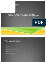 Patologia Genital 2011
