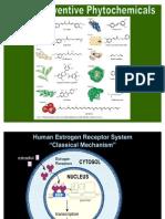 phytoestrogens