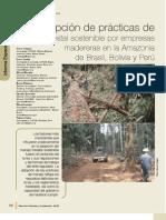 Adopción de practicas de manejo forestal sostenible en Bolivia, Brasil y Perú