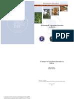 El sistema de concesiones forestales en Bolivia -  Guzmán y Quevedo