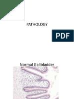 Pathology Case A