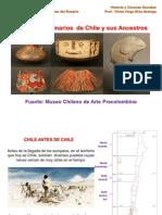 clase1pueblosoriginariosdechile-110420173544-phpapp01