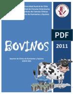 Clinica Bovinos (1)