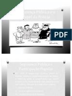 Segurança Pública e o papel da Polícia