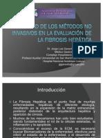Utilidad de los Métodos no Invasivos en la Evaluación de la Fibrosis Hepática