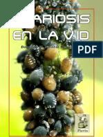 Acariosis en la Vid