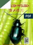 Entomología Patológica de la Vid. Parte I