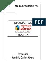 GRAMATICA_TEORIA_RESUMIDA_2010