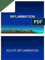 Acute ion