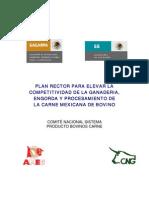Plan-rector-2007 Ganado de Carne