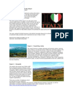 Italian Business Culture Report
