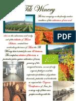 Winery Tili a.v.workshop