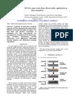 Marine Petrantoni et al- Synthesis process of Al/CuOX nano wires from silicon wafer