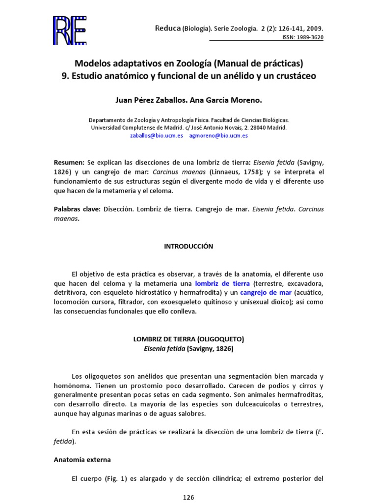 Perfecto Hoja De Cálculo Respuestas Anatomía Lombriz De Tierra Fotos ...