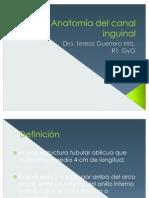 clasecanalinguinalpro-110528183222-phpapp02