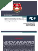 Presentacion Panela en Polvo Actual