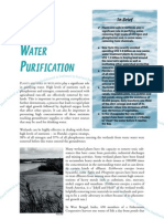 Values Water Purification e
