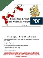 Fenologjia e Rrushit te Serezit dhe Rrushit te Frengut (Ribezave)