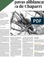 Reserva Natural de Chaparrí en Lambayeque Perú en peligro