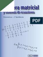 matricesv2008
