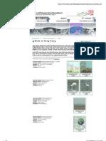 AFCD Birds in Hong Kong