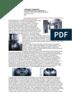 Dentomaxillofacial rtgDH-cikk