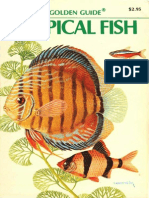 Tropical Fish - A Golden Guide