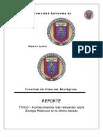 REPORTE DE ÁCIDOS
