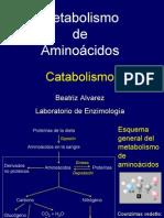 aminoacidos II 2009