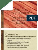 Musculo Esqueltico i Complet 3460