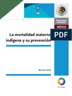 Mortal Id Ad Materna Indigena Prevencion Cdi Pnud