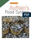Buffalo Food System 2011