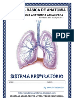 sistemarespiratorio-completa-110316181358-phpapp01