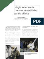 CV9 odontologia veterinaria